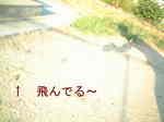 2007_0910_170900A.JPG