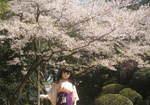 2009_0410_135657A.JPG