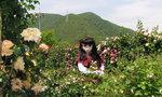 2009_0519_141049AAa.jpg