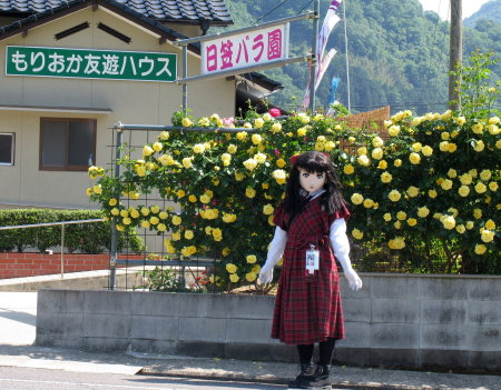 2009_0519_143303AAa.jpg