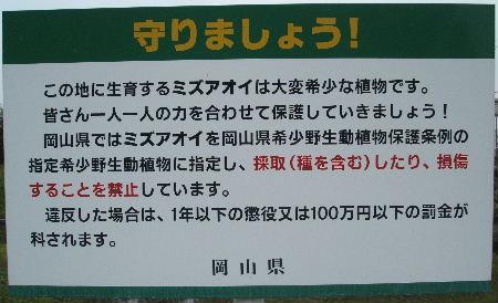 2009_0918_112937A.JPG