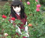 2009_1011_161122AAa_1.jpg