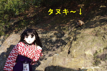 2010_0116_150034A.JPG