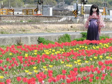 2010_0410_095302AAa.JPG