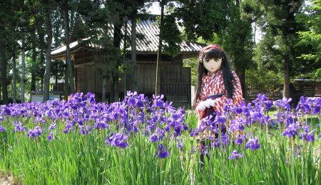 2010_0517_145006AAa.jpg