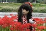 2010_0929_153130AAa.jpg