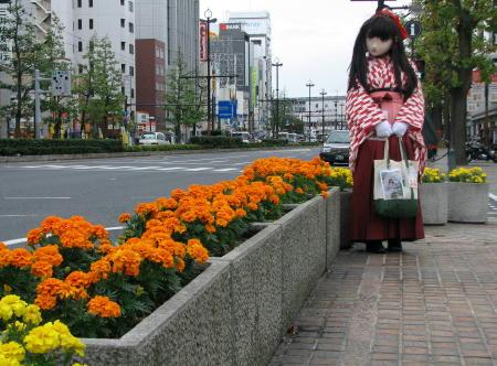 2010_1030_111458AAa.jpg