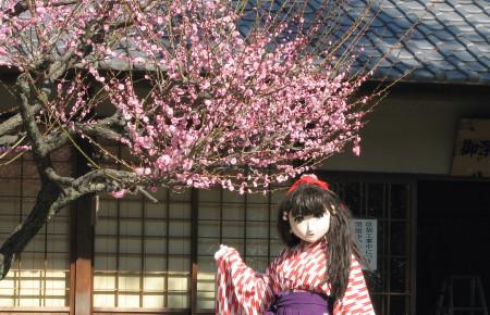 2011_0221_110620AAa.jpg