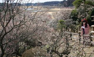 2011_0304_125038AAa.jpg