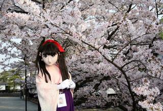 2011_0411_072828AAa.jpg