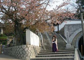 2011_0411_074428AAa.jpg