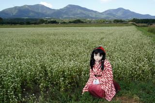 2011_0915_144850AAa.jpg