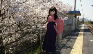 2012_0412_143107AAa.jpg