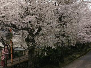 2012_0416_152136AAa.jpg