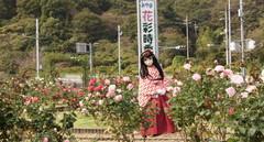 2012_1030_123032AAa.jpg
