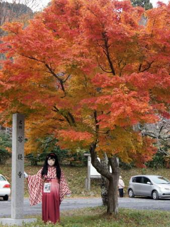 2012_1121_151110AAa.jpg