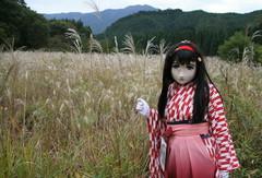 yasiro_2012_1102_151900AAa.jpg
